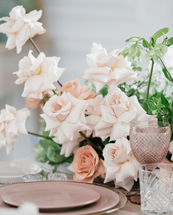 blush plates and roses